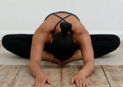 1-5 mai 2019 <br />&#8211;<br /> La thérapie par le Yoga – Partie 1 : Les clés de la santé physique