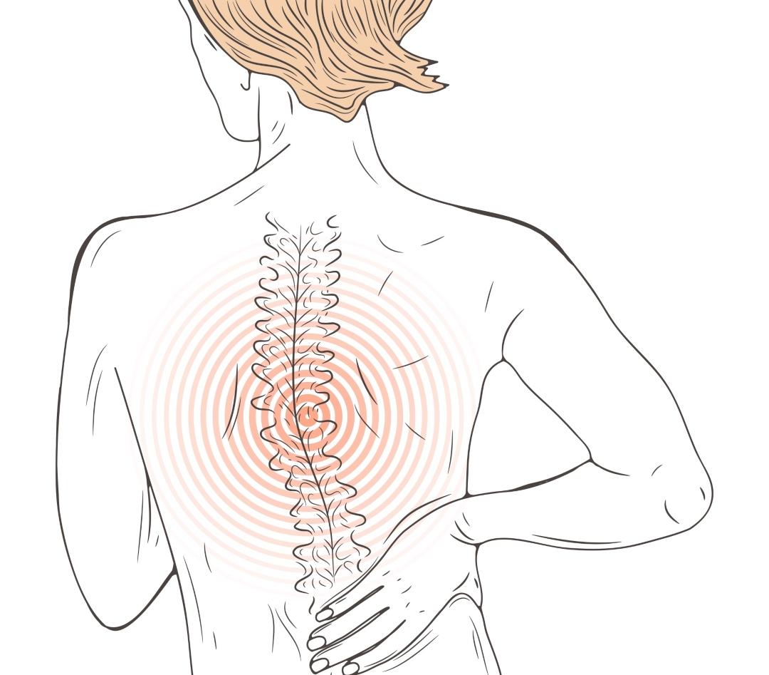 16 mai 2021 | Introduction à la fascia-thérapie, un outil pour soigner